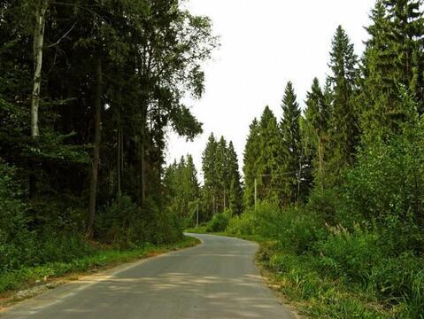 11 соток к.п. Лесной родник в близи д. Беклемишево, 50 км. от МКАД - Фото 3