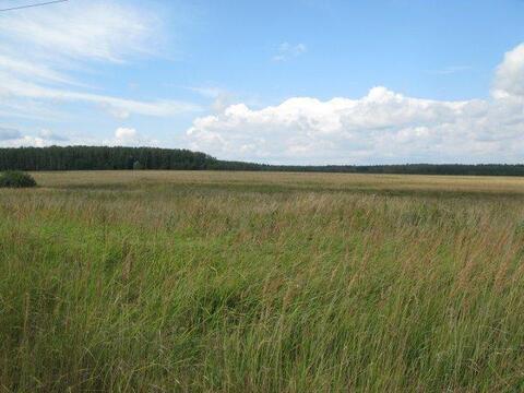 Продажа земельного участка в Новой Москве в деревне Овечкин - Фото 2