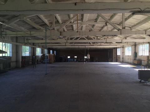 Производственное помещение 1780 кв.м. - Фото 4