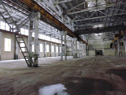 Производственное помещение 5178 м2 с жд веткой и мощностями - Фото 1