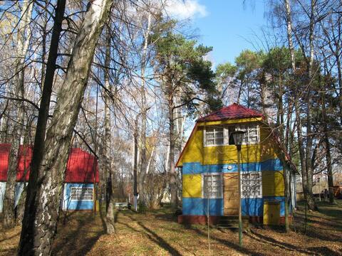 Продается база отдыха Горняк в Тульской области, Алексинский р-н - Фото 5