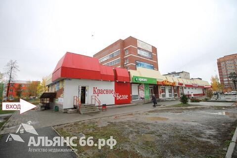 Помещение 83 кв.м. Верхняя Пышма - Фото 1