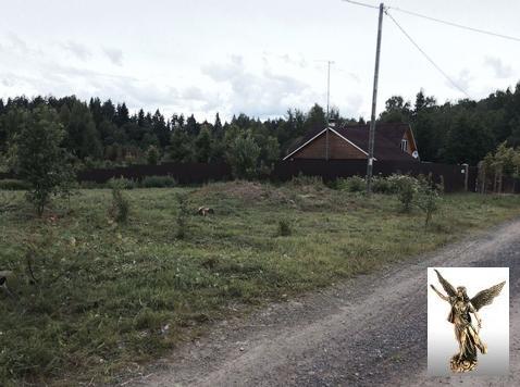 П. Красносельское ИЖС собственность: - Фото 4