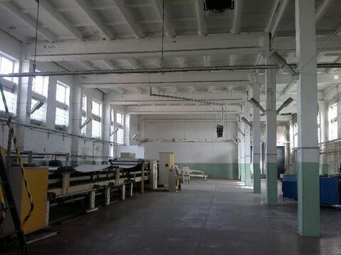 Бизнес по производству гофрокартона и гофротары - Фото 5