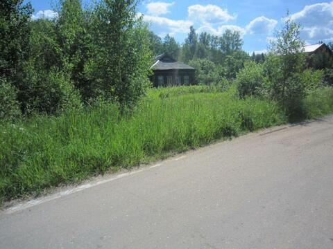 Текстильщик - 25 соток в заповеднике Завидово - Фото 5