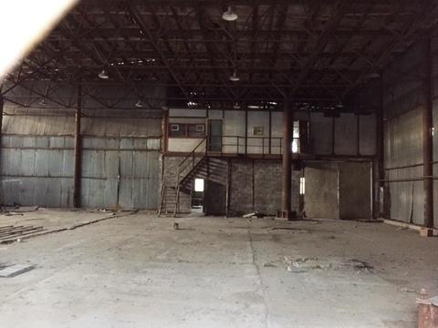 Сдается производственное помещение 1200 кв.м. - Фото 5