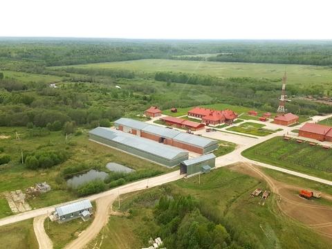 Продается действующий животноводческий комплекс в Тверской области - Фото 4