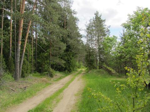 Запорожское + 9 км , деревня Удальцово - Фото 2