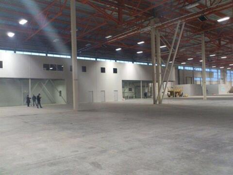 Сдам складское помещение 6500 кв.м, м. Комендантский проспект - Фото 2