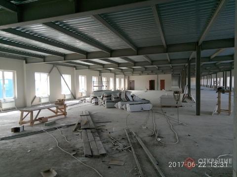 Офисный этаж (до 1500кв.м.) - Фото 3