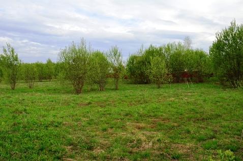 Продам участок в деревне Новинки - Фото 4