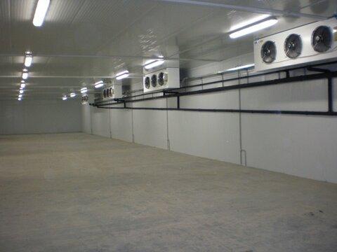 Снять склад в Севастополе. Сдам холодильную камеру 200 кв.м на .