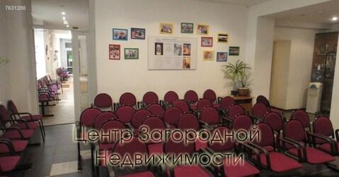 Магазин, торговая площадь, Студенческая Кутузовская, 655 кв.м, класс . - Фото 3