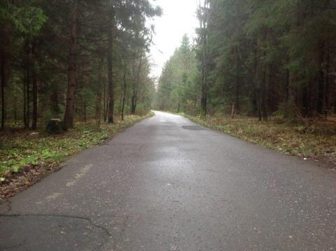 Участок 12 сот. на опушке леса. Красиво, тихо, идеальный подъезд 40км - Фото 1