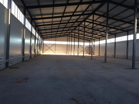Промышленное здание 1440 м2 на участке 1,5 га, под пищевое или др. - Фото 5