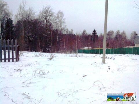 Лесной участок 45 соток рядом с рекой Искона, д. Пуршево. - Фото 4