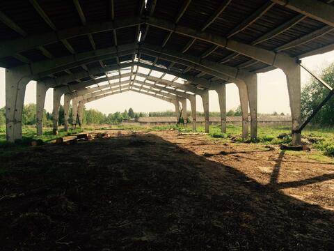 Продам земельный участок - Фото 5