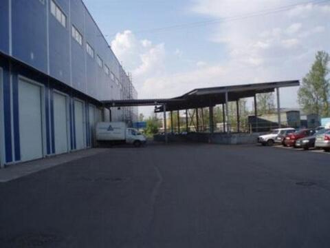 Сдам складское помещение 8440 кв.м, м. Бухарестская - Фото 4