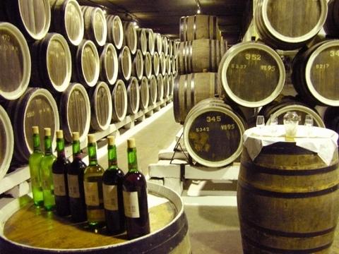 Продам Вин завод +150 га виноградников - Фото 2