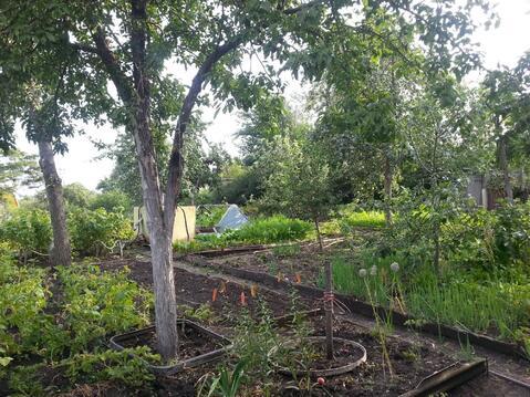 Сад девять соток в Копейске, Пластмасс-1 - Фото 3