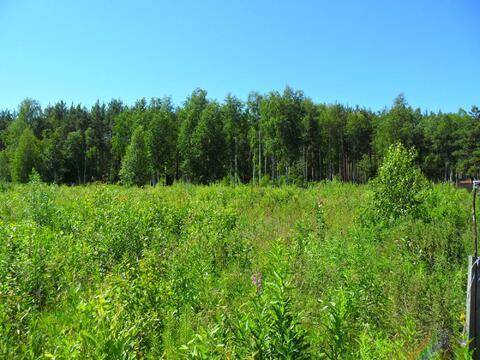 Просторный участок 22 сотки у леса - Фото 3