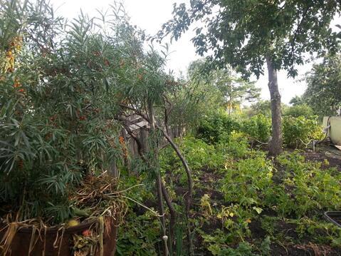 Сад девять соток в Копейске, Пластмасс-1 - Фото 2
