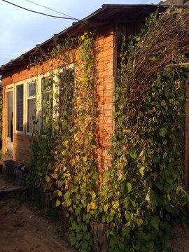 Продажа: дом 150 м2, уч. 16 сот. 2 эт. Смоленка - Фото 3