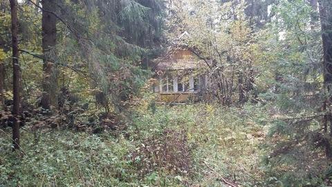 Продается земельный участок в микрорайоне Сходня, Московской области, - Фото 1