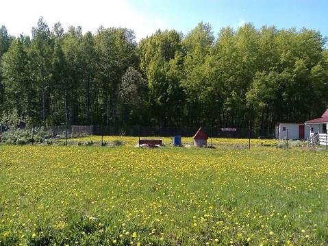 Участок 8 соток в СНТ Ветеран-7, Домодедовский р-н. - Фото 1