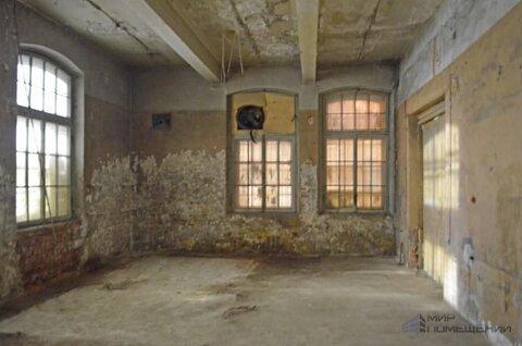 Аренда универсального помещения 198 м, 1 эт. Приморский р-он. - Фото 1
