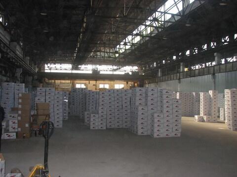 Складское помещение 1600 м2, с Кран - балками 5- 10 тонн. - Фото 1