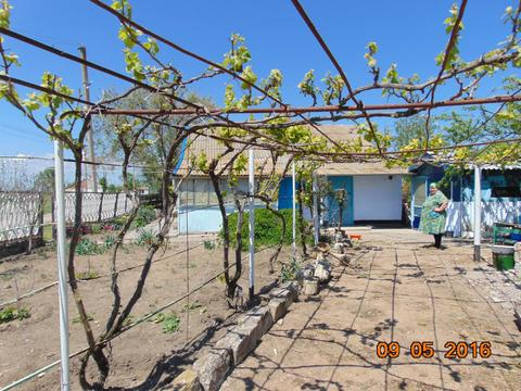 Продам добротный дом 135 кв.м. на побережье Черного моря - Фото 2