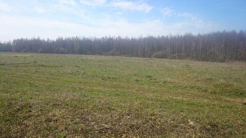 Участок 1,5 га земли промышленности в д. Морозово, 40 км от МКАД - Фото 5