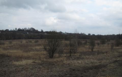 Продам 2,5 га вдоль Новорязанского ш. 35 км от МКАД ок. г. Бронницы - Фото 5
