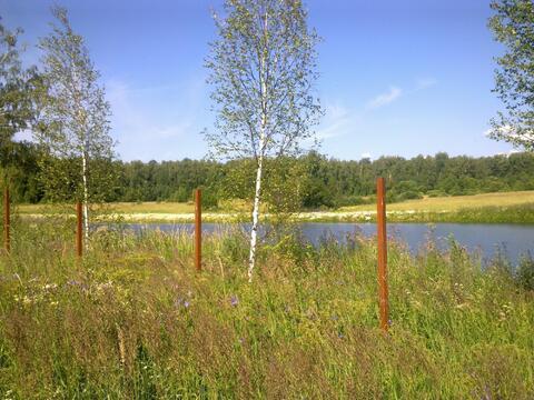 Продается земельный участок, с.Старогромово - Фото 4