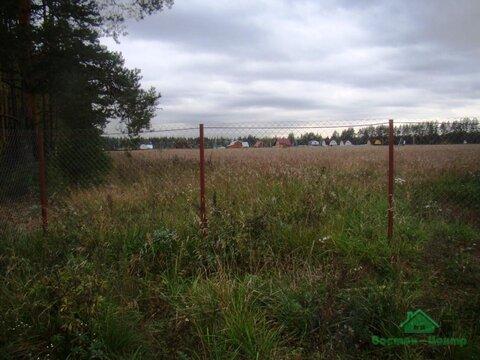 4,2 Га под сельхоз.назначение в д.Курбатово - 95 км Щёлковское шоссе - Фото 1