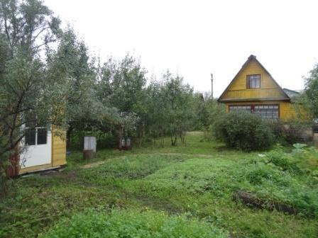 В обжитом, зеленом садоводстве массив Кобрино уютная дача на 6 сотках - Фото 1