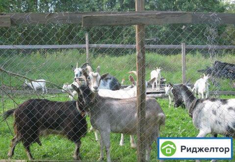 Аренда дома посуточно, Заречье, Бокситогорский район - Фото 3