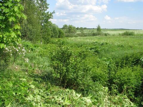 Участок 14 соток ИЖС в Скотном, 15 км от спб по Новоприозерскому шоссе - Фото 1