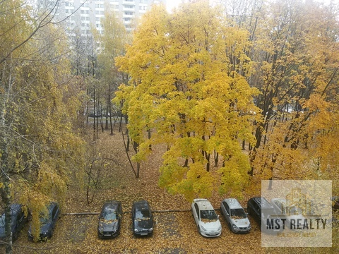 Борисовский проезд 24к1 - Фото 1