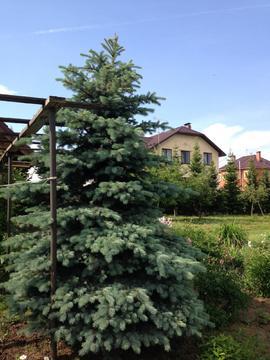 Продам дом 90 кв.м. д.Марушкино 20км от МКАД. Новая Москва - Фото 4