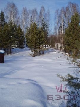 Палкинский Торфяник - Фото 1