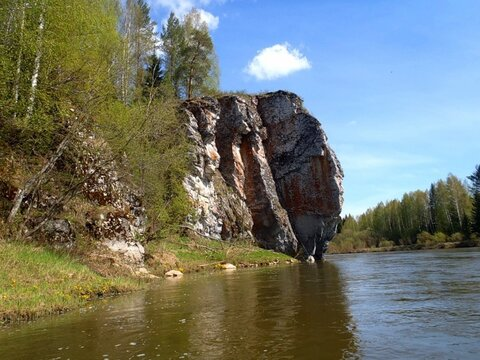 Земельный участок/с. Чусовое/ Максимовские луга - Фото 2