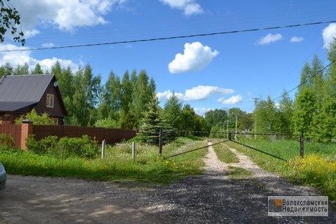 Участок 15 соток в д.Козино Волоколамского района - Фото 1