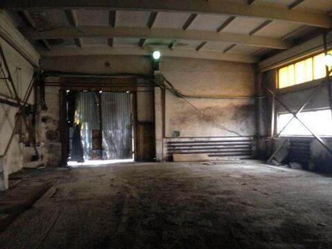 Сдам складское помещение 1240 кв.м, м. Звездная - Фото 3