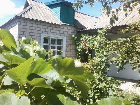 Дом, город Голая Пристань, Продажа домов и коттеджей в Голой Пристани, ID объекта - 502192703 - Фото 1