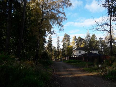 Лесной участок 10 соток - Фото 5