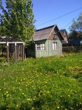 Продажа участка, Отрадное, Гурьевский район, 13-я линия - Фото 2