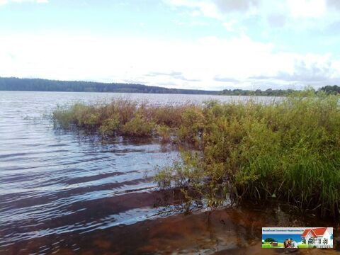 Участок 15 соток на Можайском водохранилище, д. Красновидово. - Фото 1