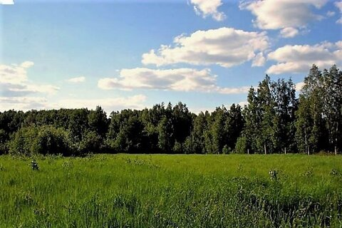 Участок 24 сотки в Подмосковье от собственника - Фото 1